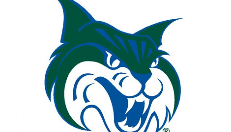 Georgia College Bobcat