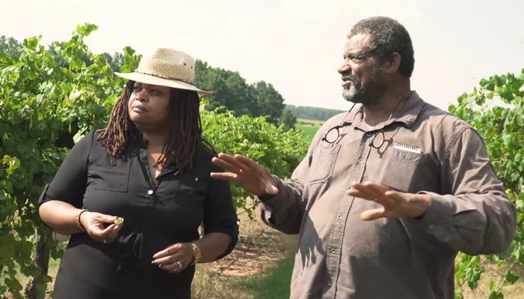 Political Scientist Veronica Womack talks with farmer James Howard about the multigenerational history of Jibb's Vineyards in Byromville, Ga. | Micheal Gillett
