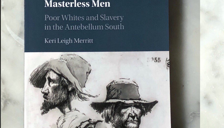 Keri Leigh Merritt's book Masterless Men: Poor Whites and Slavery in the Antebellum South